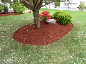 Mulch And Edging Job Salem Nh Labrie Property